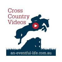 Ael Web Cross Country Icon